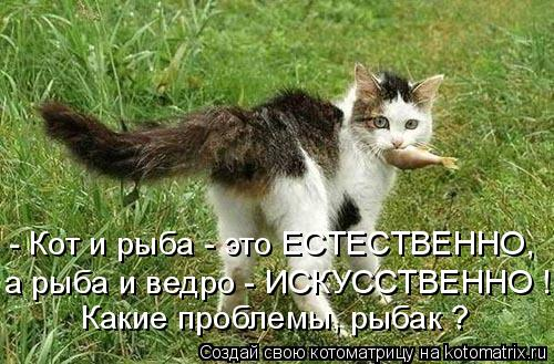 Котоматрица: - Кот и рыба - это ЕСТЕСТВЕННО, а рыба и ведро - ИСКУССТВЕННО ! Какие проблемы, рыбак ?