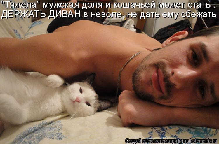 """Котоматрица: """"Тяжела"""" мужская доля и кошачьей может стать : ДЕРЖАТЬ ДИВАН в неволе, не дать ему сбежать"""