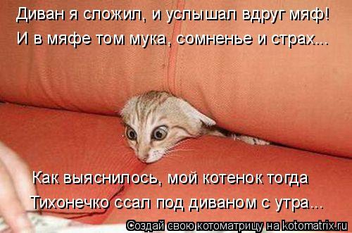 Котоматрица: Диван я сложил, и услышал вдруг мяф! И в мяфе том мука, сомненье и страх... Как выяснилось, мой котенок тогда Тихонечко ссал под диваном с утра.