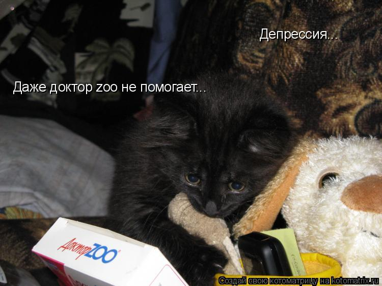Котоматрица: Депрессия... Даже доктор zoo не помогает...
