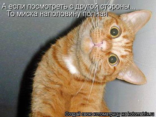 Котоматрица: А если посмотреть с другой стороны... То миска наполовину полная