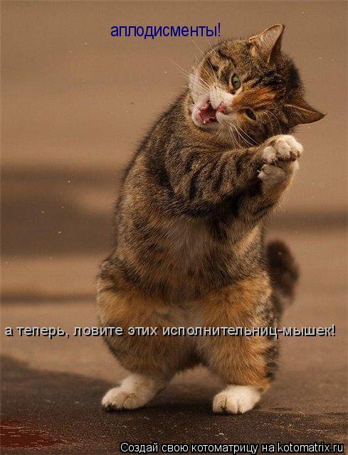 Котоматрица: аплодисменты! а теперь, ловите этих исполнительниц-мышек!
