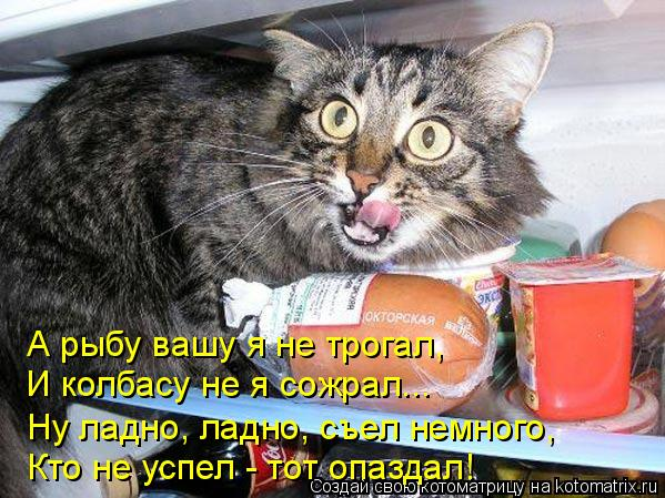 Котоматрица: А рыбу вашу я не трогал, И колбасу не я сожрал... Ну ладно, ладно, съел немного, Кто не успел - тот опаздал!