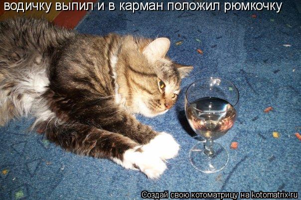 Котоматрица: водичку выпил и в карман положил рюмкочку