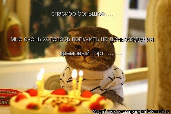 Котоматрица: спасибо большое.......  мне очень хотелось получить на деньрождения  кремовый торт .........