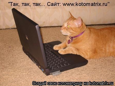"Котоматрица: ""Так, так, так... Сайт: www.kotomatrix.ru"""
