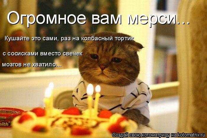 Котоматрица: Огромное вам мерси...  Кушайте это сами, раз на колбасный тортик с сосисками вместо свечек мозгов не хватило...