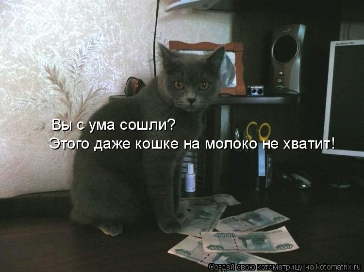 Котоматрица: Вы с ума сошли?  Этого даже кошке на молоко не хватит!