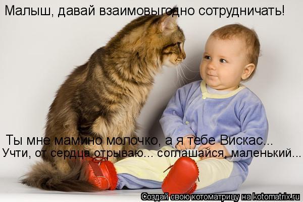 Котоматрица: Малыш, давай взаимовыгодно сотрудничать! Ты мне мамино молочко, а я тебе Вискас... Учти, от сердца отрываю... соглашайся, маленький...
