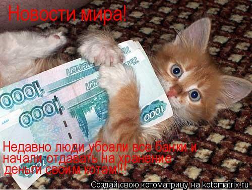Котоматрица: Новости мира! Недавно люди убрали все банки и начали отдавать на хранение деньги своим котам!!!