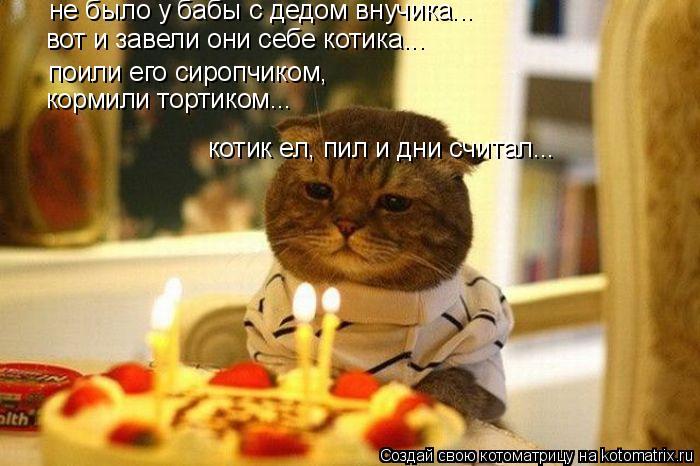 Котоматрица: не было у бабы с дедом внучика... вот и завели они себе котика... поили его сиропчиком, кормили тортиком... котик ел, пил и дни считал...