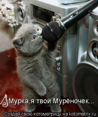 Котоматрица: Мурка,я твой Мурёночек...