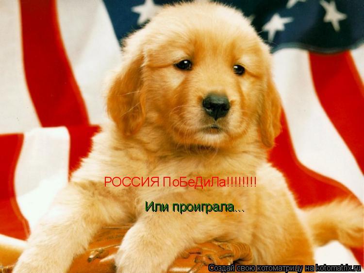 Котоматрица: РОССИЯ ПоБеДиЛа!!!!!!!! Или проиграла...