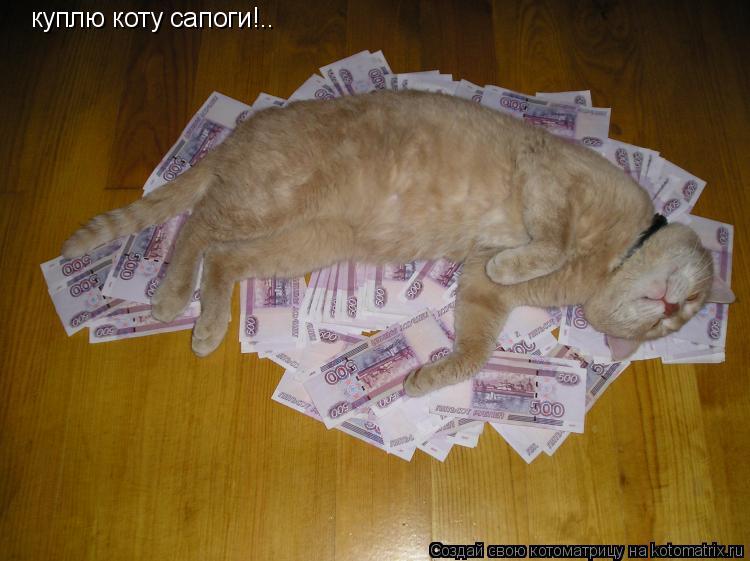 Котоматрица: куплю коту сапоги!..