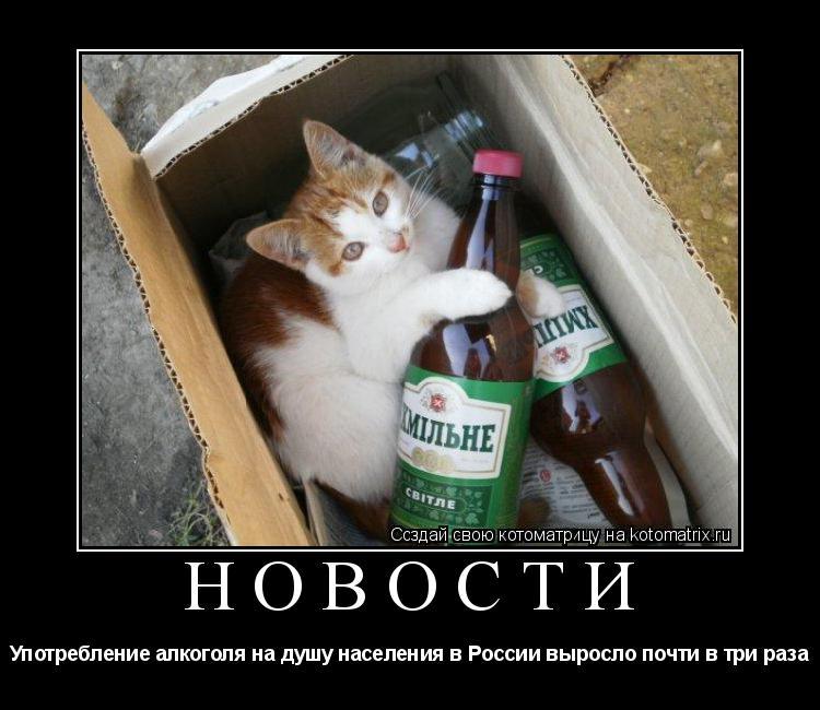 Котоматрица: Новости Употребление алкоголя на душу населения в России выросло почти в три раза