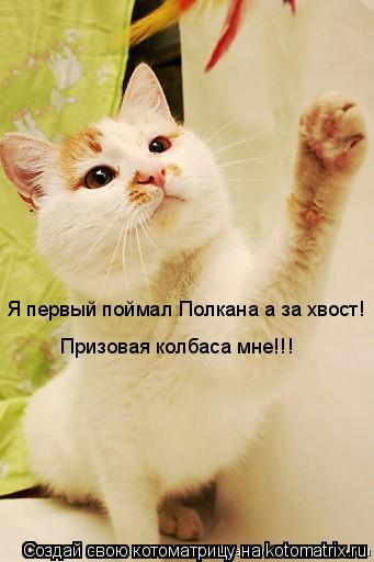 Котоматрица: Я первый поймал Полкана а за хвост! Призовая колбаса мне!!!