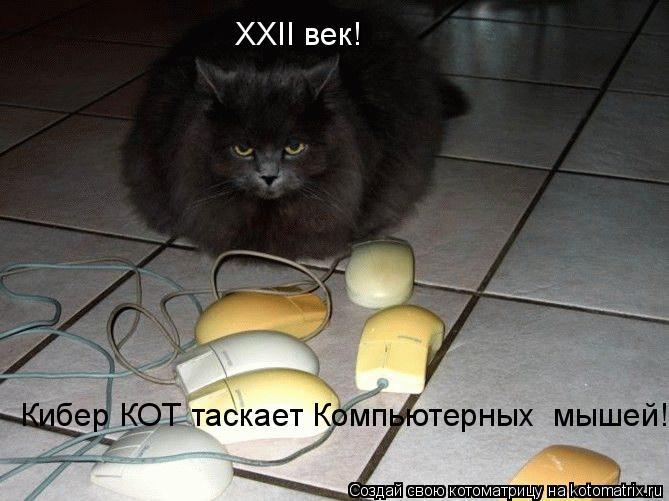ХХII век! Кибер КОТ таскает Компьютерных  мышей!