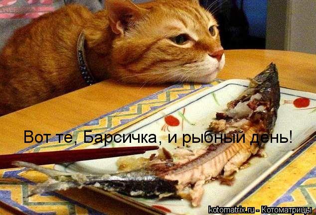 Котоматрица: Вот те, Барсичка, и рыбный день!