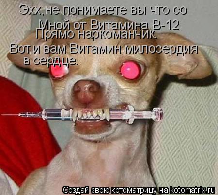 Котоматрица: Эхх,не понимаете вы что со Мной от Витамина B-12 Прямо наркоманчик. Вот,и вам Витамин милосердия  в сердце.