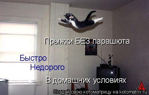 Котоматрица: Быстро Прыжки БЕЗ парашюта Недорого В домашних условиях