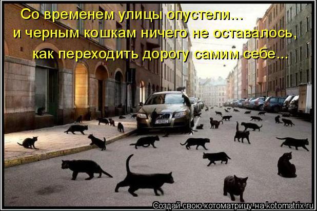 Котоматрица: Со временем улицы опустели... и черным кошкам ничего не оставалось, как переходить дорогу самим себе...