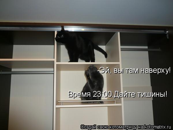 Котоматрица: -Эй, вы там наверху!  Время 23:00.Дайте тишины!