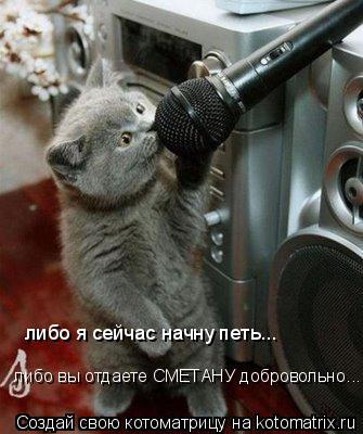 Котоматрица: либо я сейчас начну петь... либо вы отдаете СМЕТАНУ добровольно...