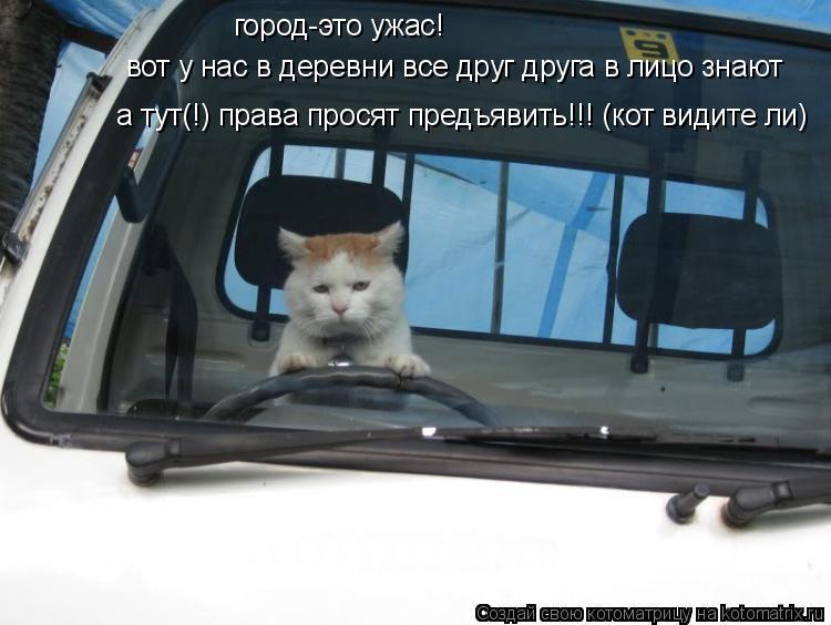 Котоматрица: город-это ужас! вот у нас в деревни все друг друга в лицо знают а тут(!) права просят предъявить!!! (кот видите ли)