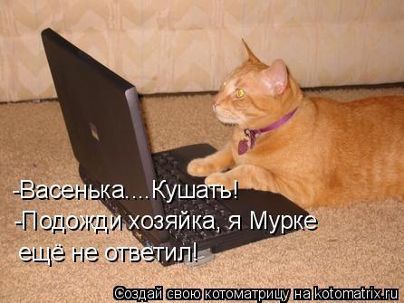 Котоматрица: -Васенька....Кушать! -Подожди хозяйка, я Мурке ещё не ответил!