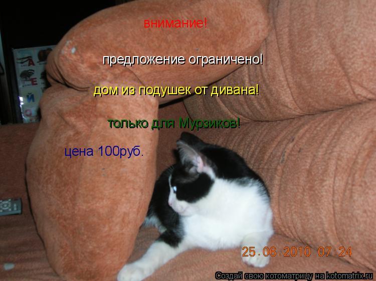Котоматрица: предложение ограничено! внимание! дом из подушек от дивана! только для Мурзиков! цена 100руб.