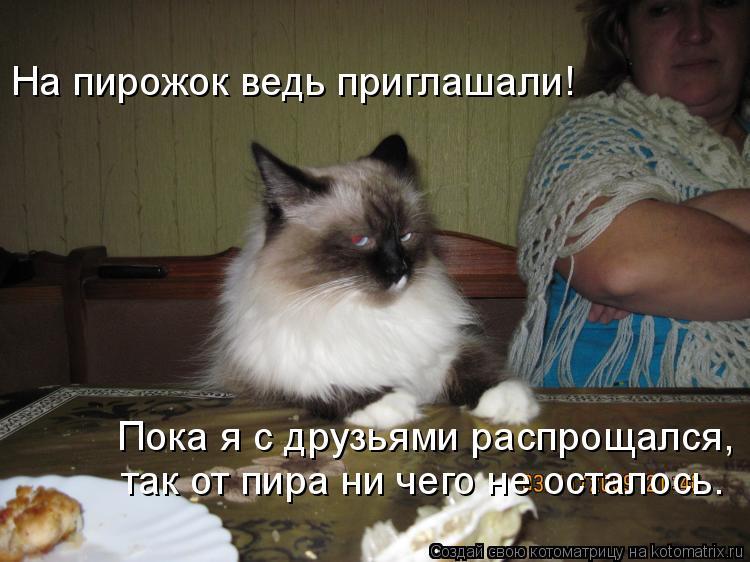 Котоматрица: На пирожок ведь приглашали! Пока я с друзьями распрощался, так от пира ни чего не осталось.