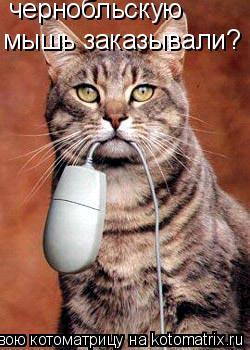 Котоматрица: чернобльскую  мышь заказывали?