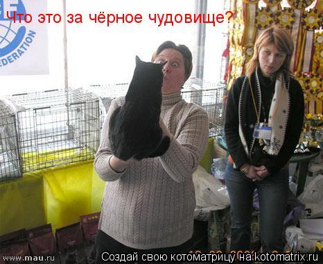 Котоматрица: Что это за чёрное чудовище?