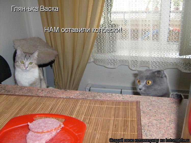 Котоматрица: Глян-ька Васка НАМ оставили колбаски!