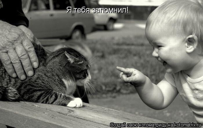 Котоматрица: Я тебя запомнил!