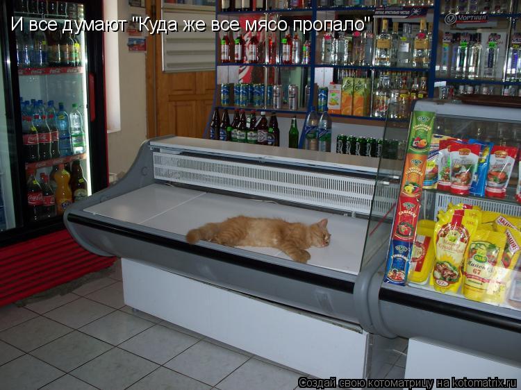 "Котоматрица: И все думают ""Куда же все мясо пропало"""