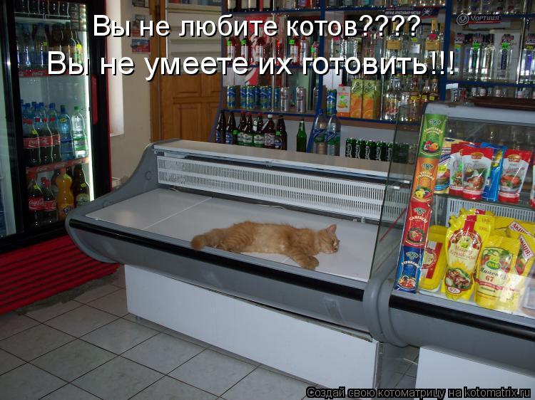 Котоматрица: Вы не любите котов???? Вы не умеете их готовить!!!