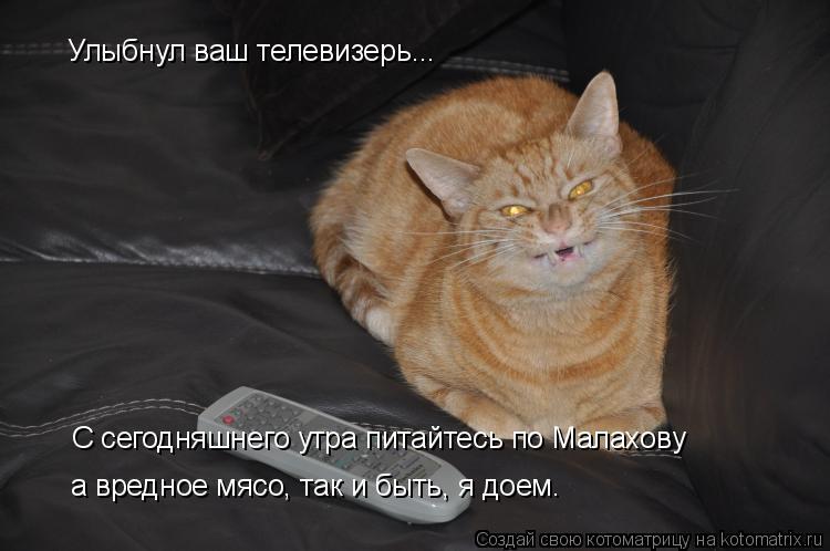 Котоматрица: Улыбнул ваш телевизерь... С сегодняшнего утра питайтесь по Малахову а вредное мясо, так и быть, я доем.