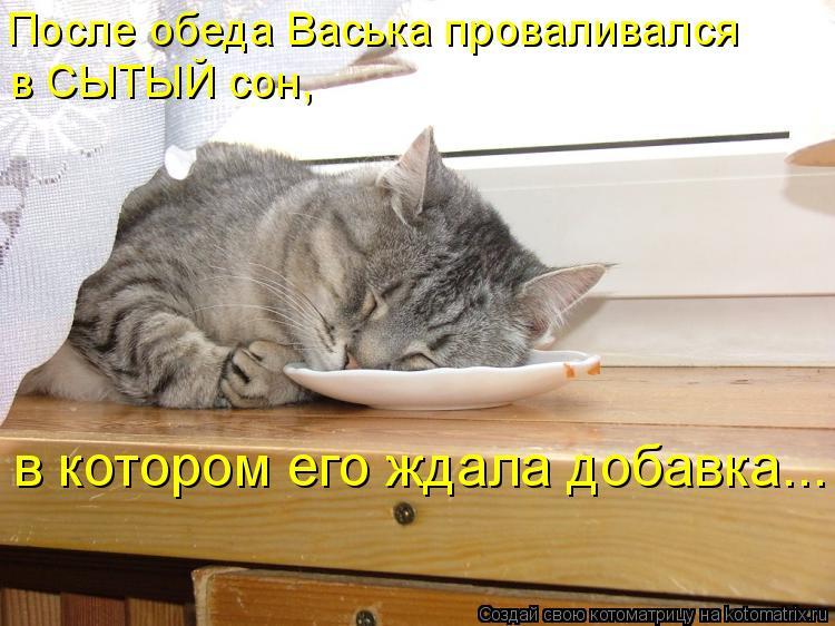 Котоматрица: После обеда Васька проваливался  в СЫТЫЙ сон,   в котором его ждала добавка...