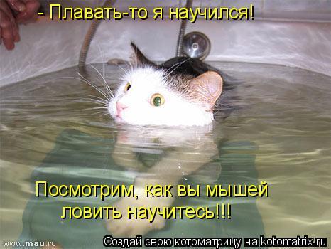 Котоматрица: - Плавать-то я научился! Посмотрим, как вы мышей ловить научитесь!!!