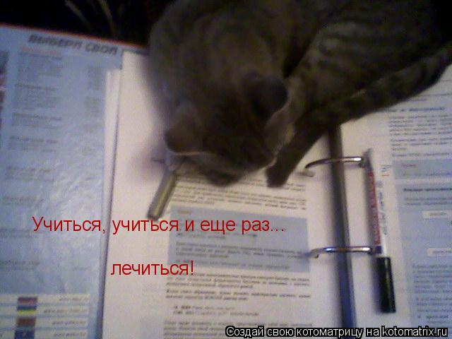 Котоматрица: Учиться, учиться и еще раз... лечиться!