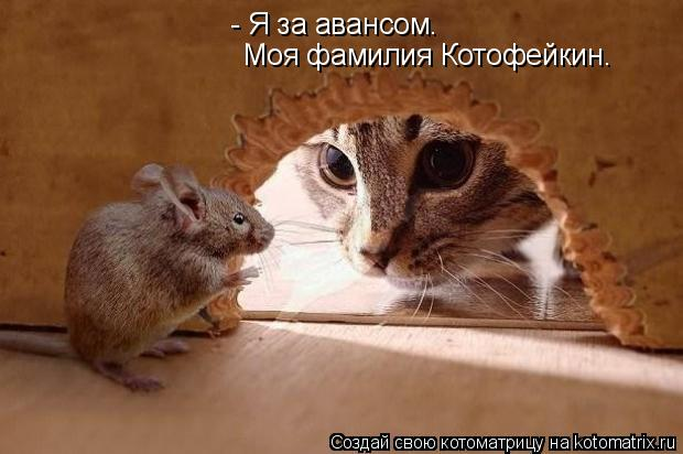 Котоматрица: - Я за авансом. Моя фамилия Котофейкин.