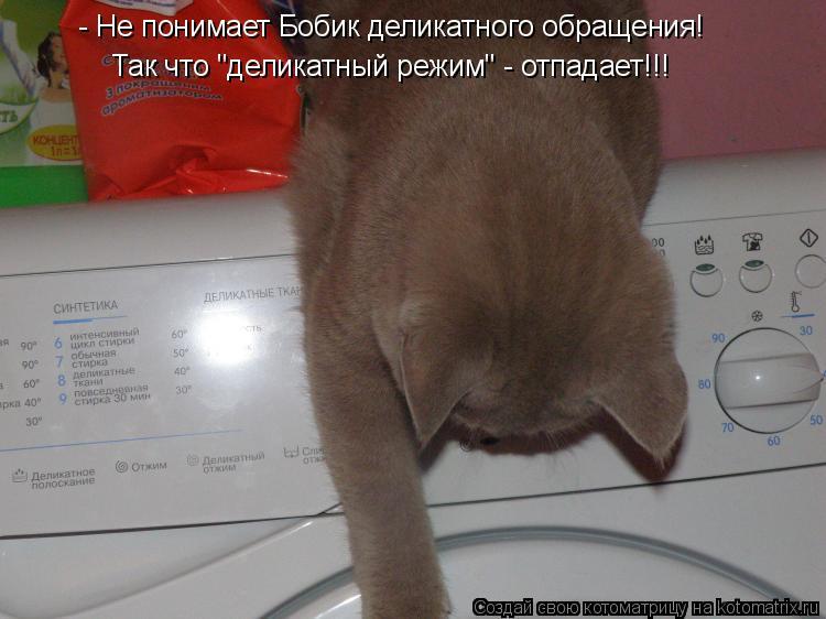 """Котоматрица: - Не понимает Бобик деликатного обращения! Так что """"деликатный режим"""" - отпадает!!!"""