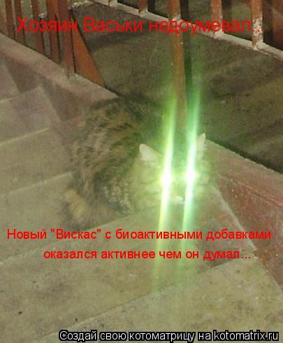 """Котоматрица: Хозяин Васьки недоумевал... Новый """"Вискас"""" с биоактивными добавками оказался активнее чем он думал..."""