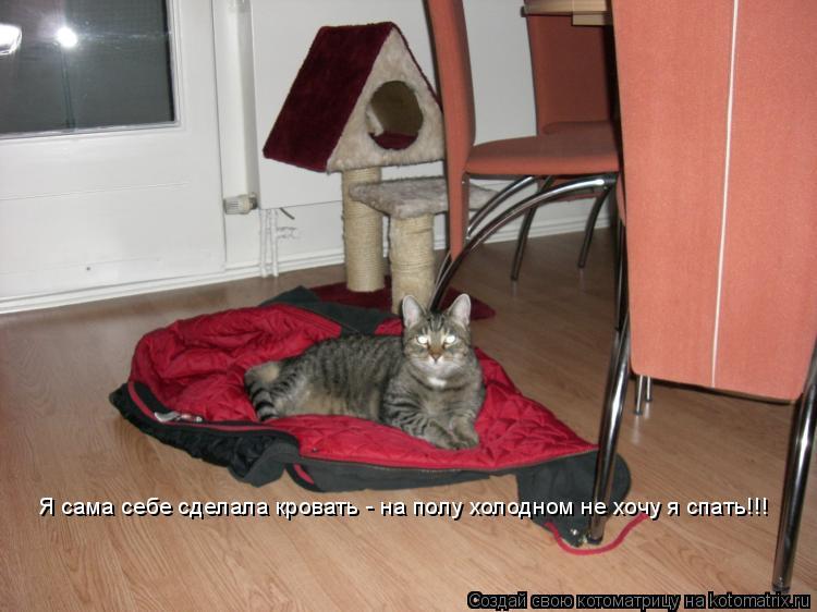 Котоматрица: Я сама себе сделала кровать - на полу холодном не хочу я спать!!!