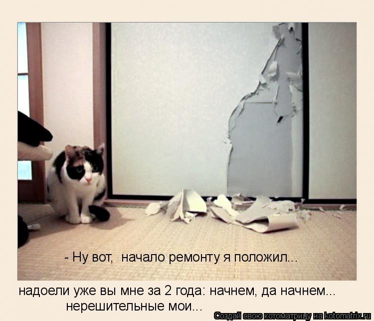 Котоматрица: - Ну вот,  начало ремонту я положил... надоели уже вы мне за 2 года: начнем, да начнем... нерешительные мои...
