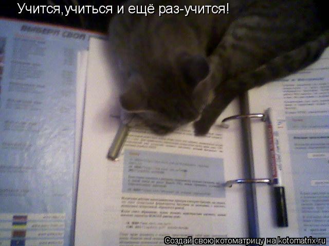 Котоматрица: Учится,учиться и ещё раз-учится!