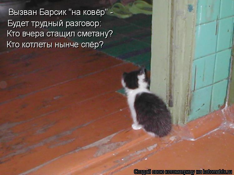 """Котоматрица: Вызван Барсик """"на ковёр"""" - Будет трудный разговор: Кто вчера стащил сметану? Кто котлеты нынче спёр?"""