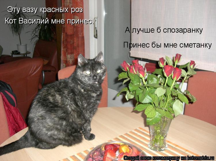 Котоматрица: Эту вазу красных роз Кот Василий мне принес. А лучше б спозаранку Принес бы мне сметанку