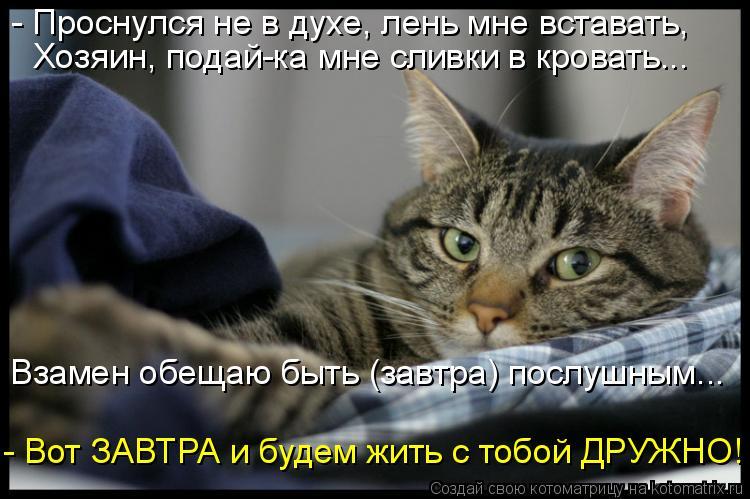 Котоматрица: - Проснулся не в духе, лень мне вставать, Хозяин, подай-ка мне сливки в кровать... Взамен обещаю быть (завтра) послушным... - Вот ЗАВТРА и будем ж